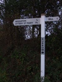 "Episode 5: ""In front of me was a signpost that said 'Burrow'…"""