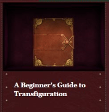 beginners-guide-transfiguration