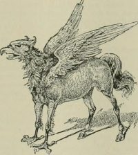 Fowl or Foul? A Study of Hippogriff Brutality