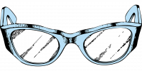 Re-Visibility Spectacles (Re-Visibility Glasses)