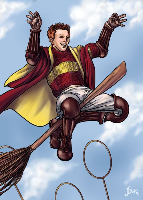 Quidditch – The Harry Potter Lexicon