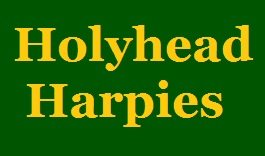 Holyhead Harpies Quidditch Team