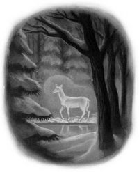 DH19: The Silver Doe