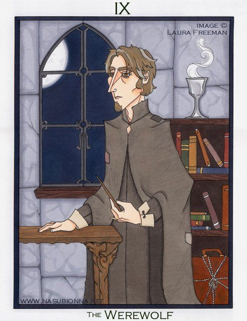 Harry Potter Tarot: The Hermit