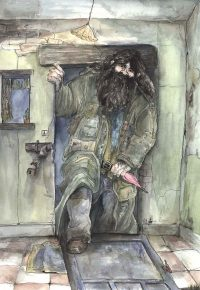 Just after midnight, Hagrid arrives at the hut-on-the-rock