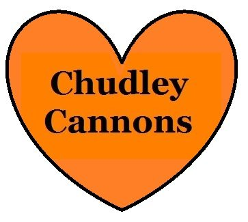 Chudley Cannons Quidditch Team supporter