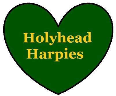 Holyhead Harpies Quidditch Team supporter