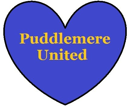 Puddlemere United Quidditch Team supporter