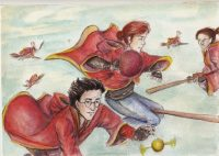 Who says Quidditch is stupid?