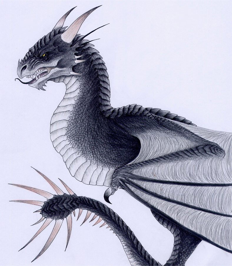 The Hungarian Horntail