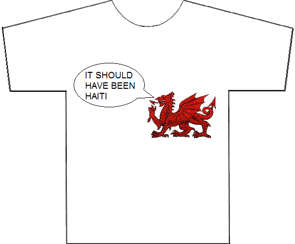 Quidditch World Cup 2014 Gwenog Jones's t-shirt (4 June 2014)