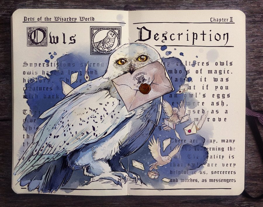 Pets of the Wizarding World: Owls