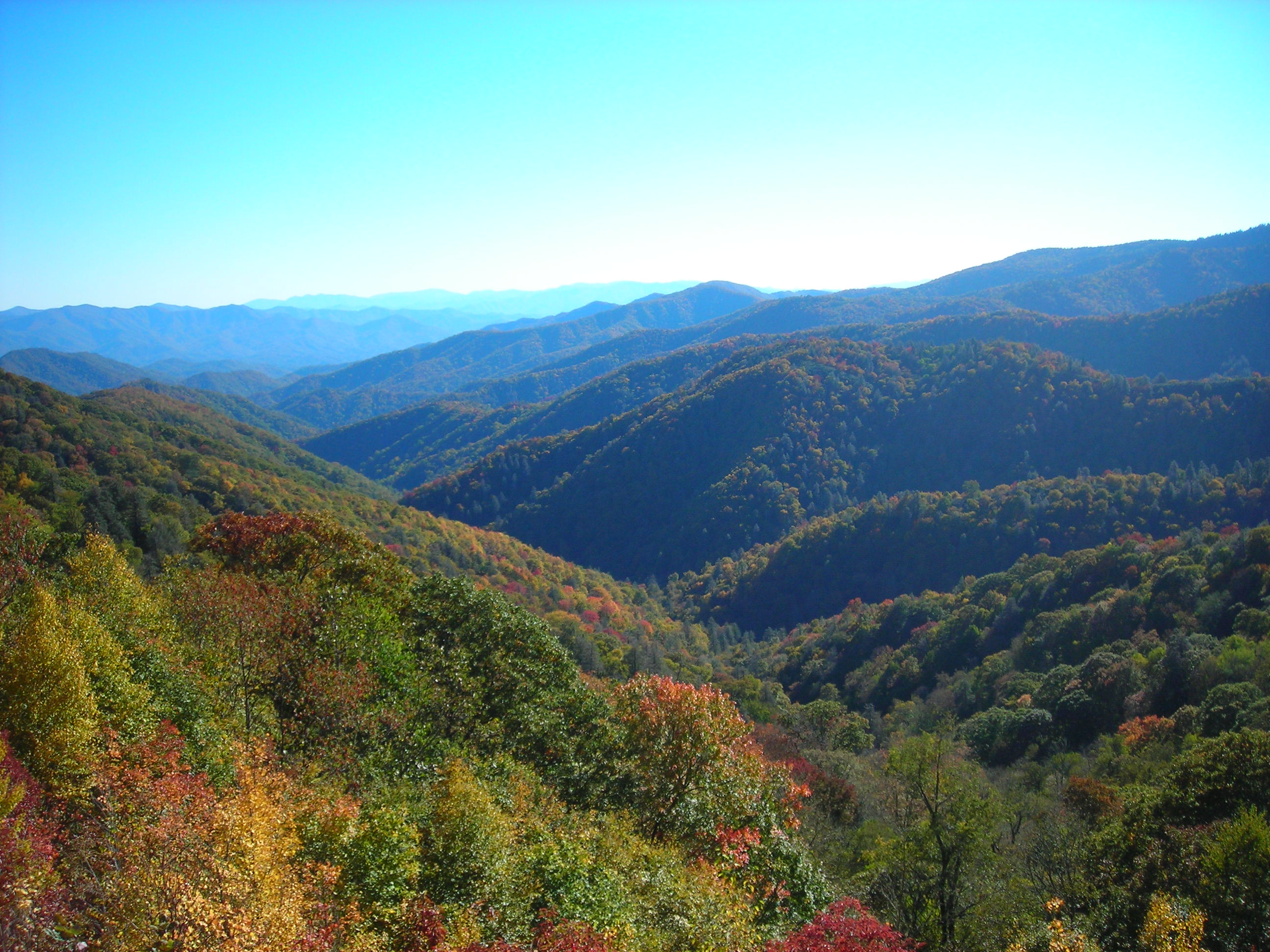 Fall at Oconaluftee Overlook
