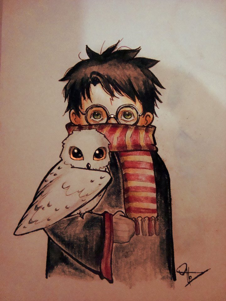 harry-and-hedwig