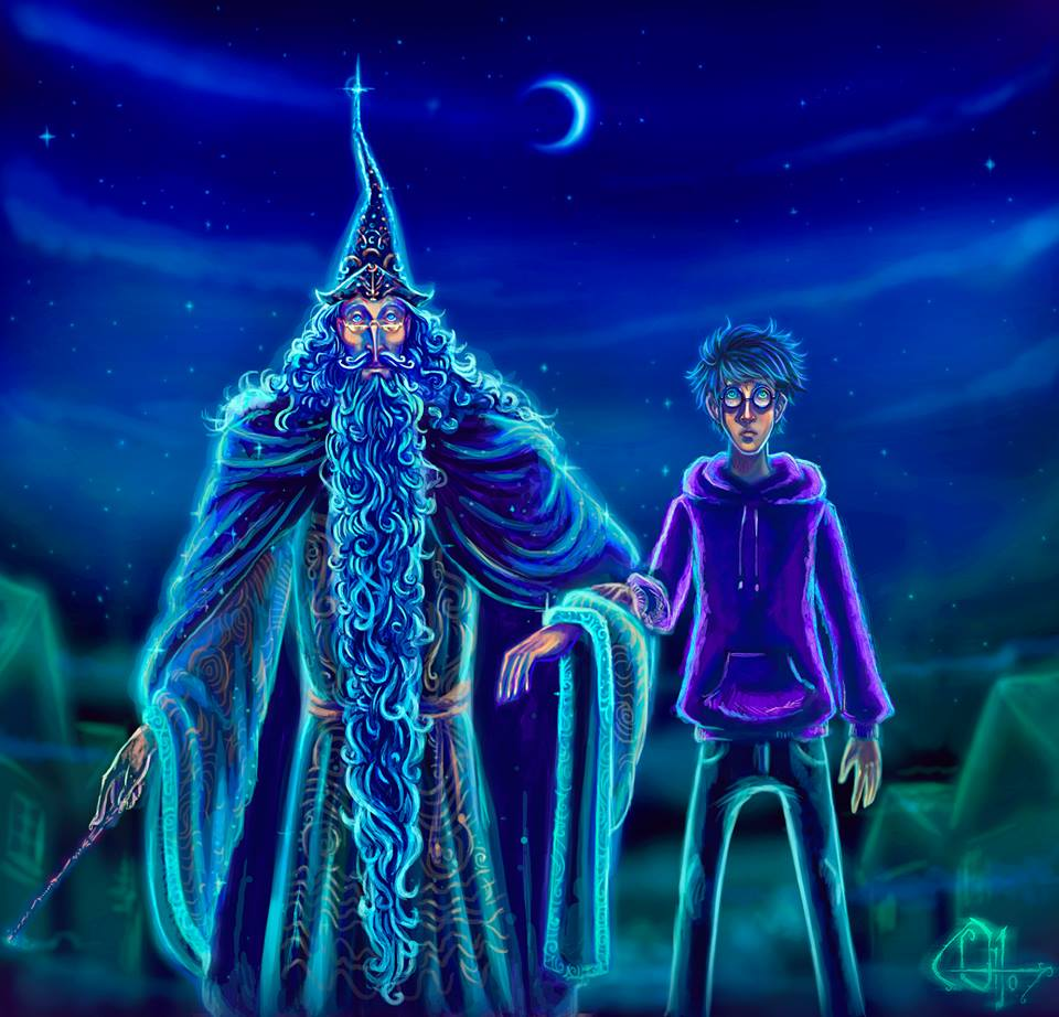 Harry Dumbledore Sidealong