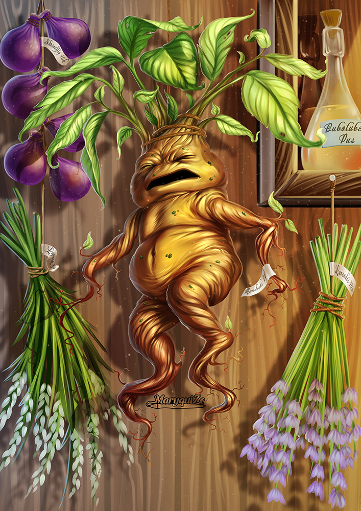 Mandrake – The Harry Potter Lexicon House Plants