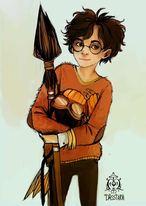 Harry – Quidditch