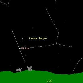 canis-major