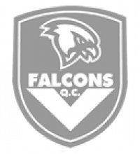 World-famous Beaters Kevin and Karl Broadmoor join the Falmouth Falcons