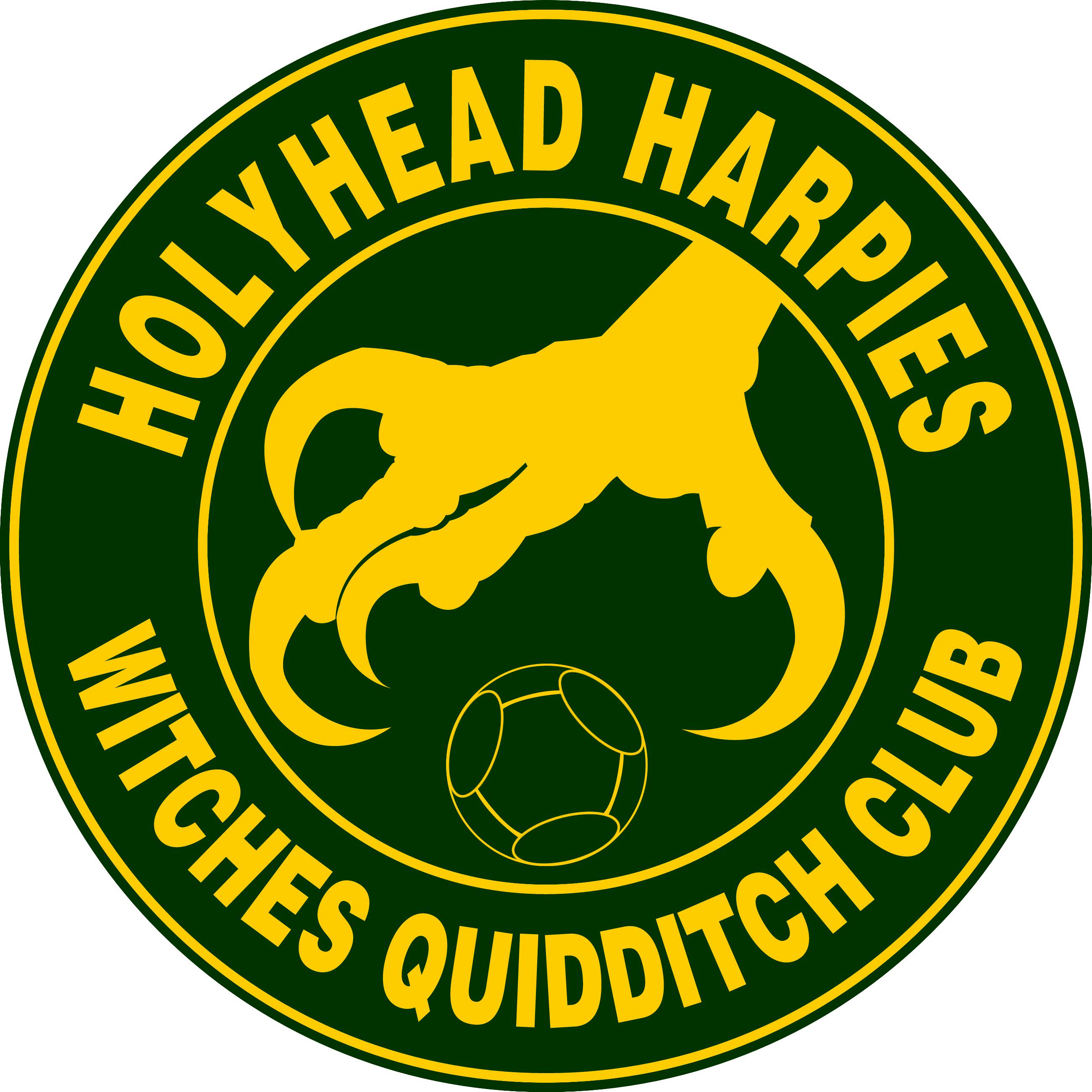 Holyhead Harpies Quidditch Team logo