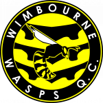 Wimbourne Wasps Quidditch team logo